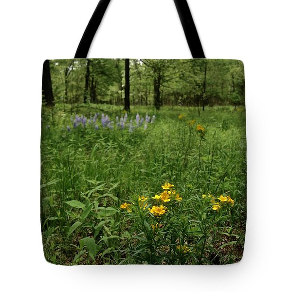 Savanna Tote Bag by Tim Good