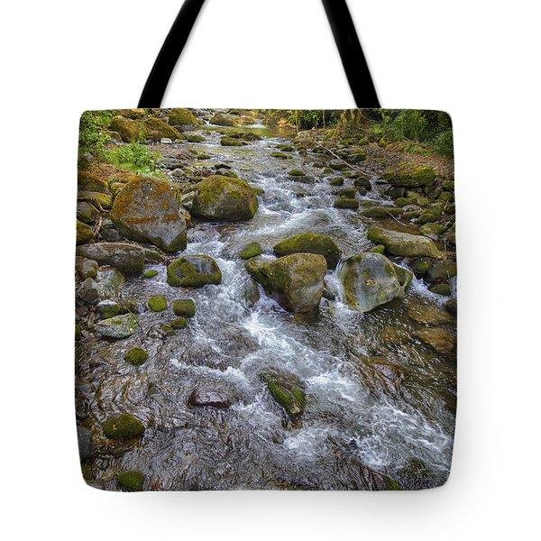 Savegre River - Costa Rica 2 Tote Bag