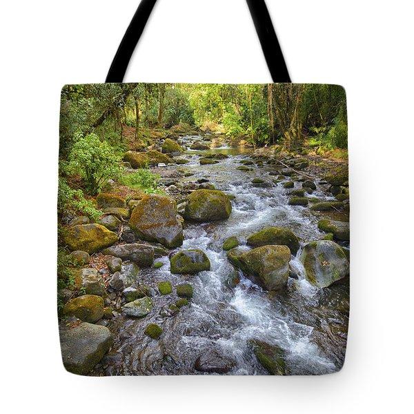 Savegre River - Costa Rica 3 Tote Bag