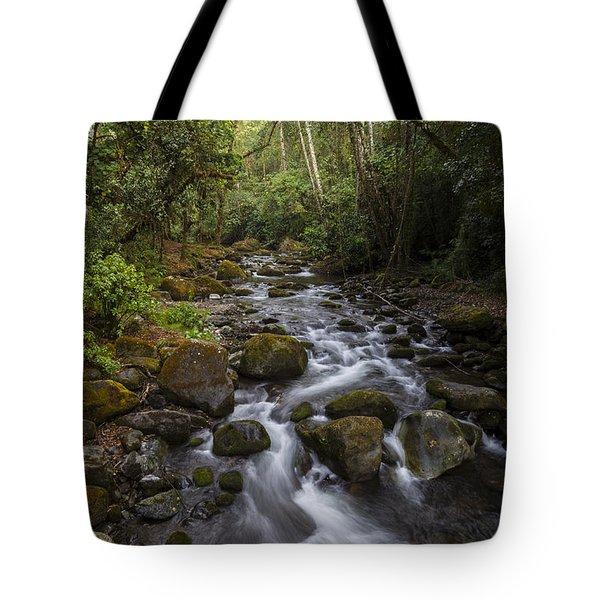 Savegre River - Costa Rica 4 Tote Bag