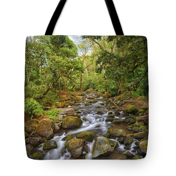 Savegre River - Costa Rica 5 Tote Bag