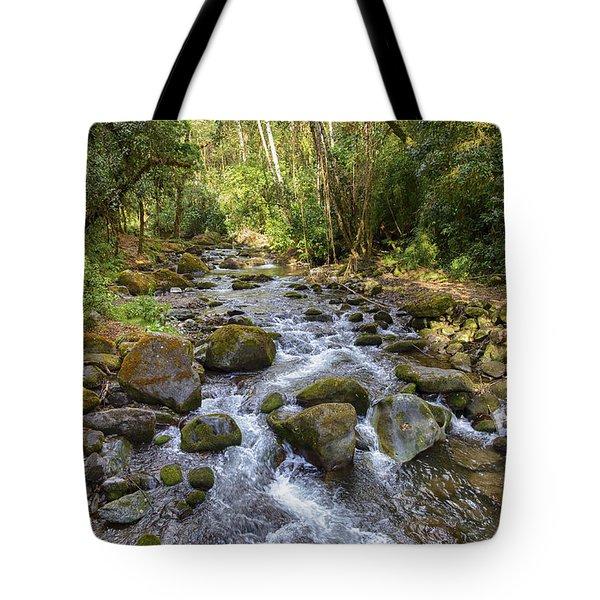 Savegre River - Costa Rica Tote Bag