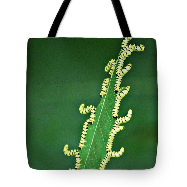 Sawflies Tote Bag