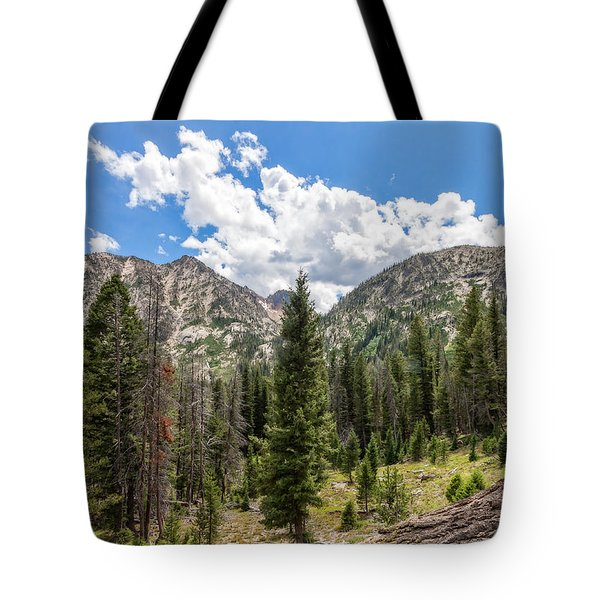 Sawtooth Wilderness 1 Tote Bag