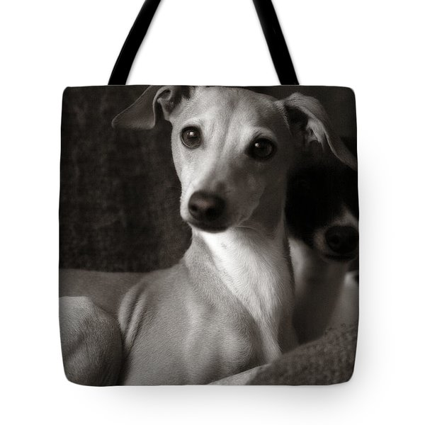 Say What Italian Greyhound Tote Bag