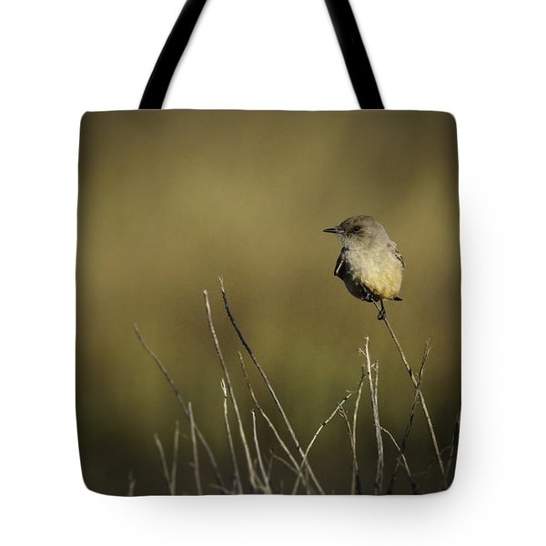 Say's Flycatcher Tote Bag