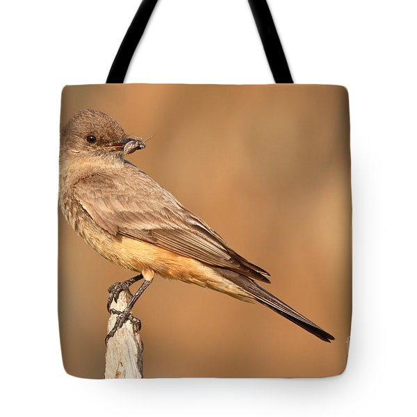 Tote Bag featuring the photograph Say's Phoebe Looking Back With Insect Grasped In Beak by Max Allen
