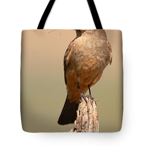 Tote Bag featuring the photograph Say's Phoebe On Perch With Grasshopper In Beak by Max Allen