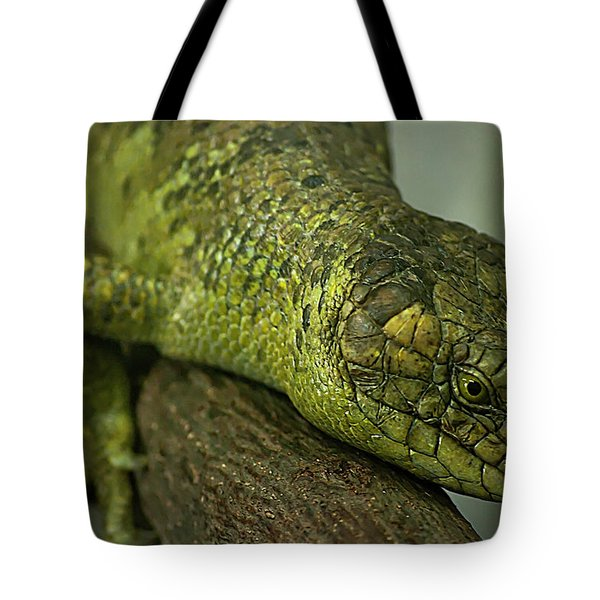 Scales Of The Hunter Tote Bag