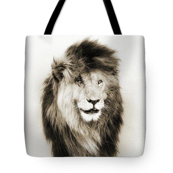 Scar Lion Closeup Square Sepia Tote Bag