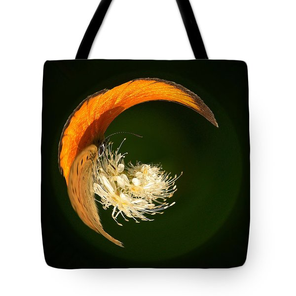 Tote Bag featuring the photograph Scarce Copper 4 by Jouko Lehto