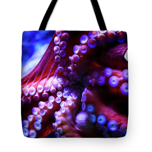 Tote Bag featuring the photograph Scarlet Below by T A Davies