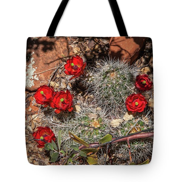 Tote Bag featuring the photograph Scarlet Cactus Blooms by Lon Dittrick