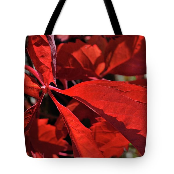 Tote Bag featuring the photograph Scarlet Intensity by Ron Cline