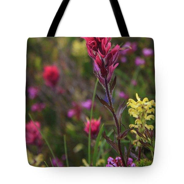 Scarlet Paintbrush Tote Bag