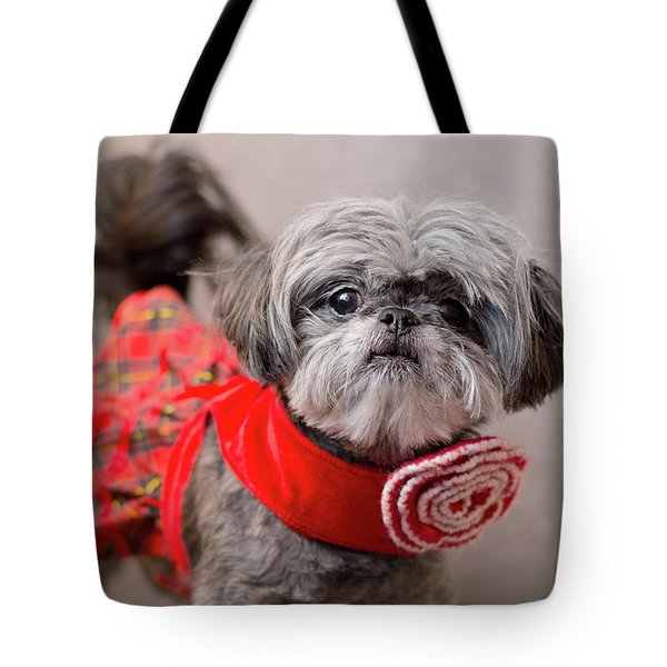 Tote Bag featuring the photograph Scarlett In Christmass Dress by Irina ArchAngelSkaya