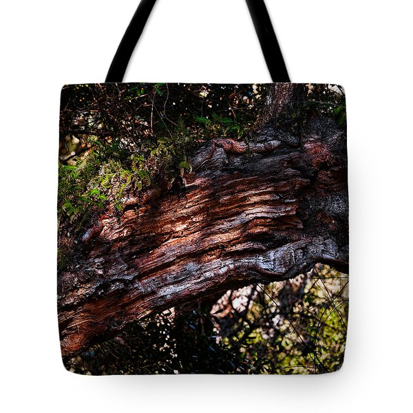 Scarred Tote Bag by Christopher Holmes