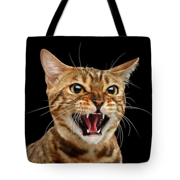 Scary Hissing Bengal Cat On Black Background Tote Bag