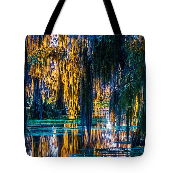 Scary Swamp In The Daytime Tote Bag