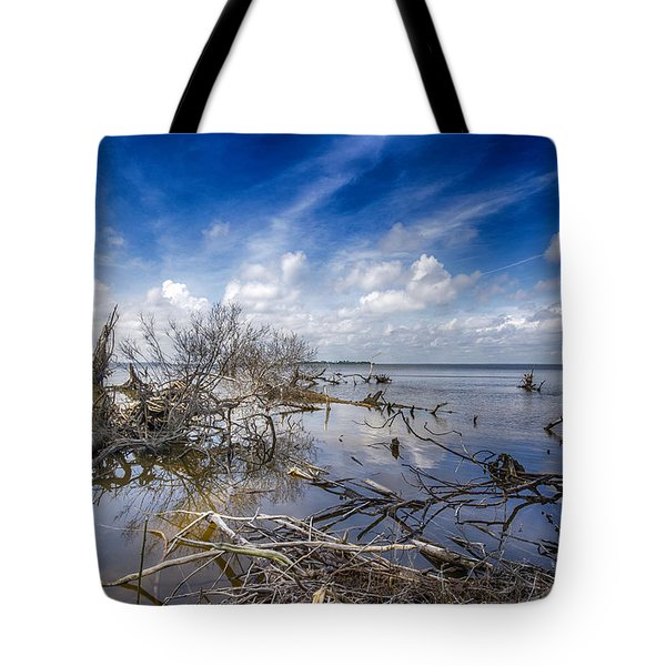 Scattered Clouds Tote Bag by Alan Raasch