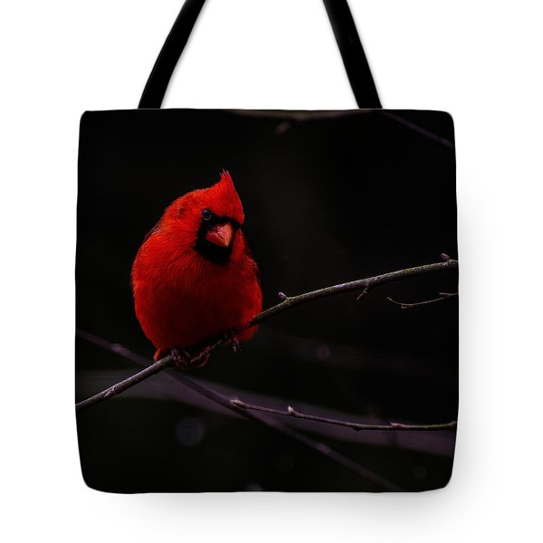 Scene Stealer  Tote Bag by John Harding