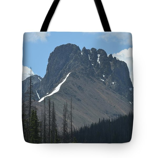Mountain Scenery Hwy 14 Co Tote Bag
