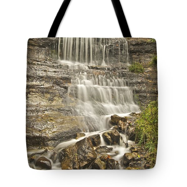 Scenic Alger Falls  Tote Bag by Michael Peychich