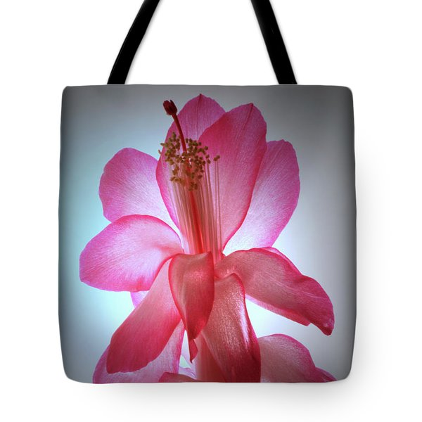 Tote Bag featuring the photograph Schlumbergera Portrait. by Terence Davis
