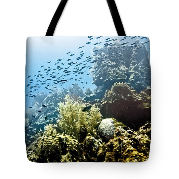 Tote Bag featuring the photograph School Fish Rainbow by Perla Copernik