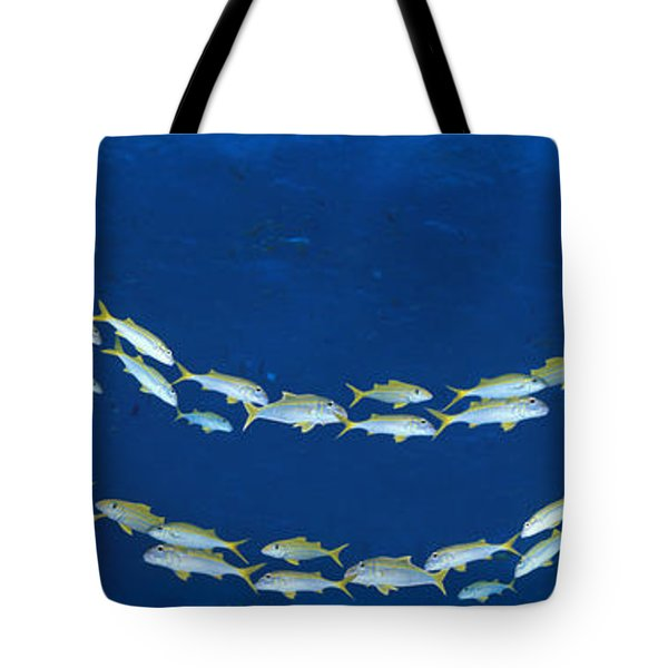 School Of Fish Great Barrier Reef Tote Bag