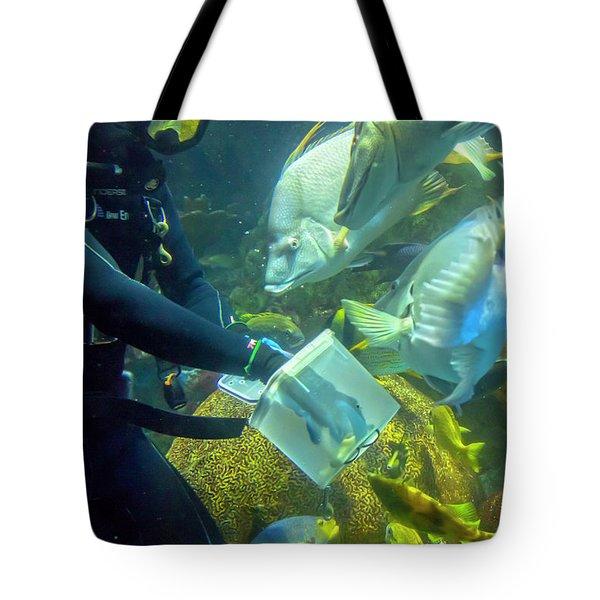 Schooling Break Tote Bag