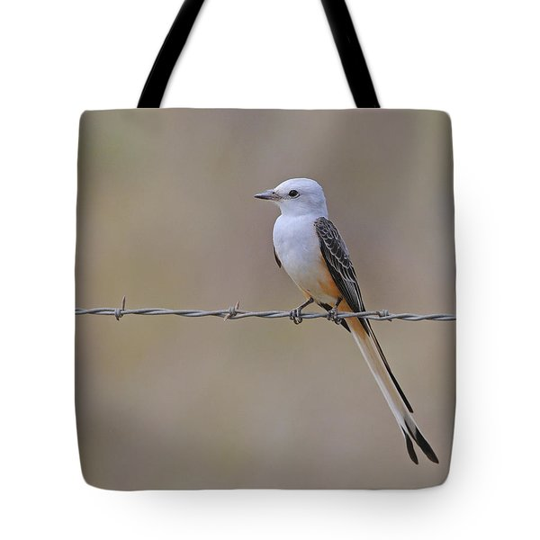 Scissor-tailed Flycatcher Tote Bag by Tony Beck