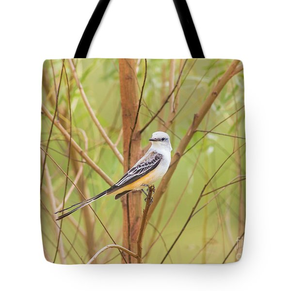 Tote Bag featuring the photograph Scissortail In Scrub by Robert Frederick