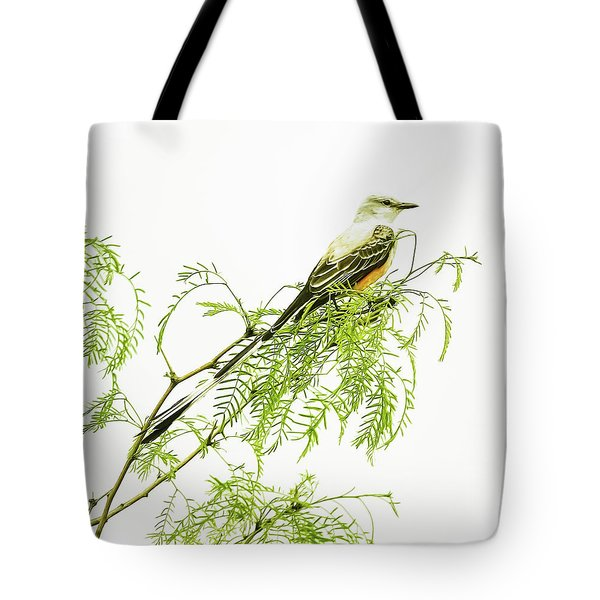 Tote Bag featuring the photograph Scissortail On Mesquite by Robert Frederick