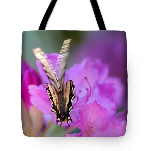 Tote Bag featuring the photograph Scissorwings by Susan Capuano