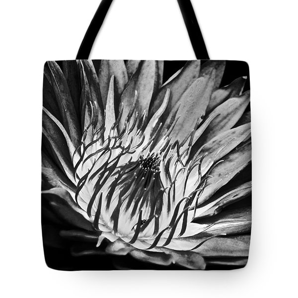 Scorched Lotus Tote Bag
