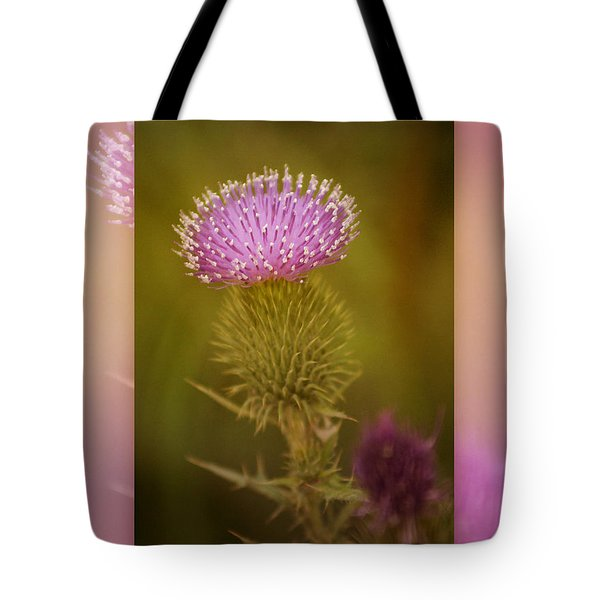 Scotch Thistle Tote Bag by Holly Kempe