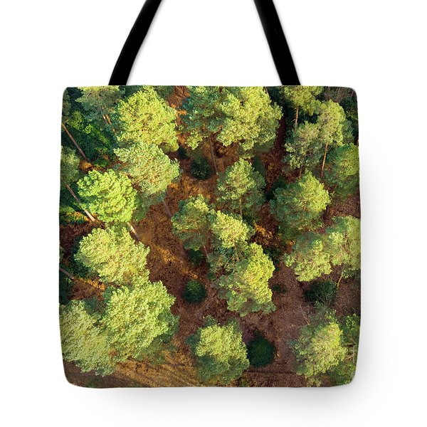 Scots Pines Tote Bag