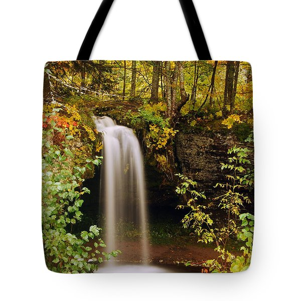 Scott Falls Tote Bag by Michael Peychich