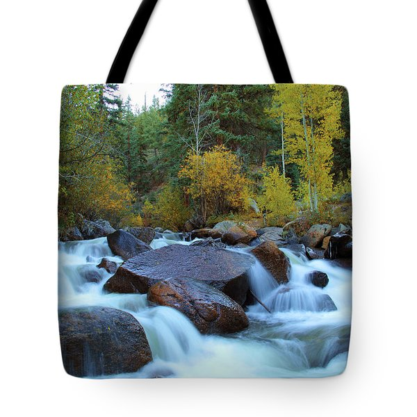 Tote Bag featuring the photograph Scott Gomer Creek At Guanella Pass by Marie Leslie