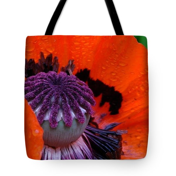 Scottie Tote Bag by Priscilla Richardson
