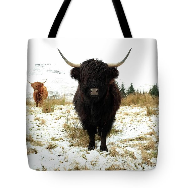 Scottish Black Highland Coo Tote Bag