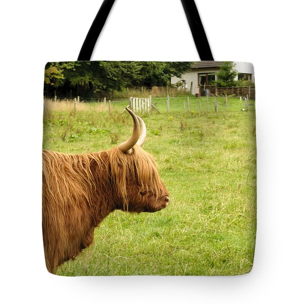 Tote Bag featuring the photograph Scottish Cattle Farm by Christi Kraft