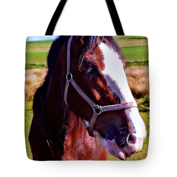 Scottish Clydesdale  Tote Bag by Roger Wedegis