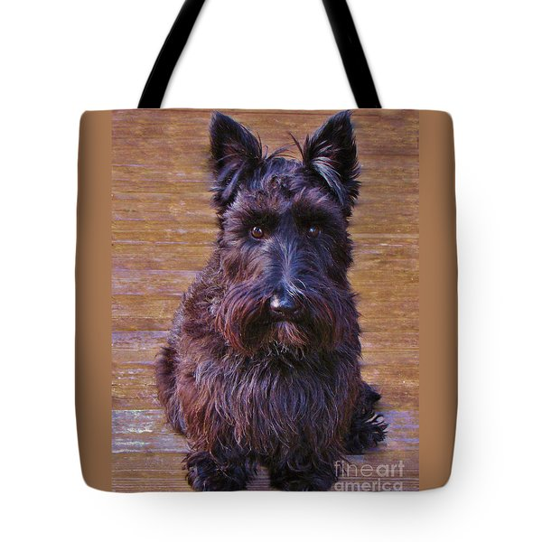Tote Bag featuring the photograph Scottish Terrier by Michele Penner