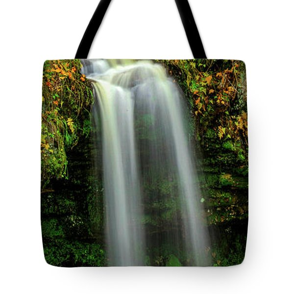 Scotts Fall Tote Bag