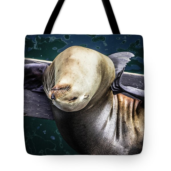 California Sea Lion - Scratch The Itch Tote Bag