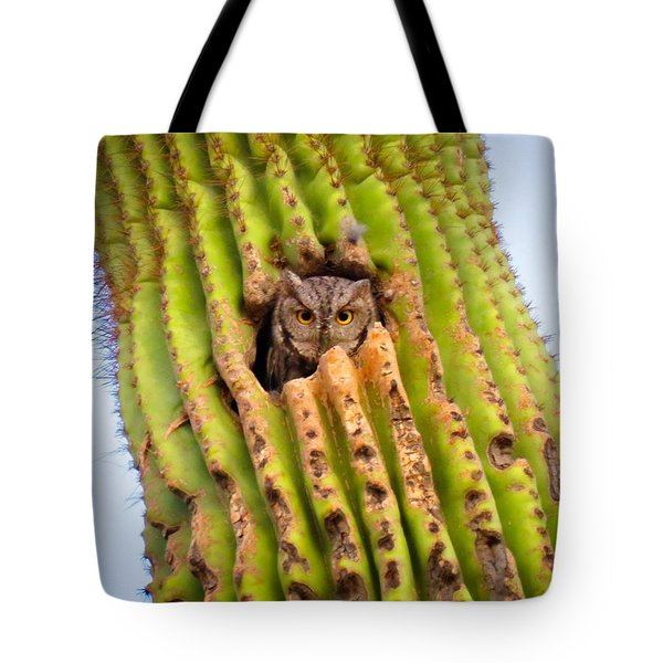 Screech Owl In Saguaro Tote Bag