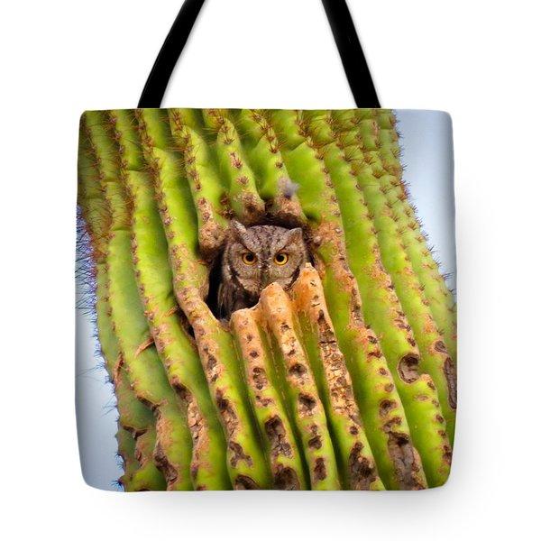 Screech Owl In Saguaro Tote Bag