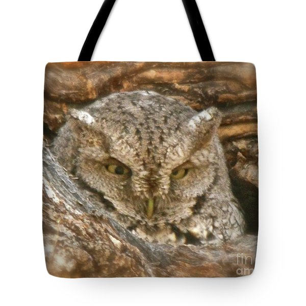 Screech Owl On Spring Creek Tote Bag